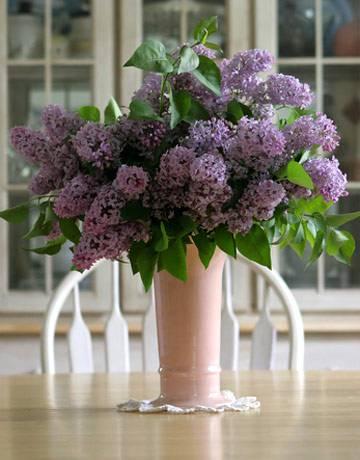 8th  Anniversary Flowers