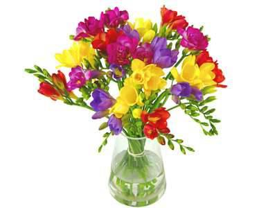 7th  Anniversary Flowers