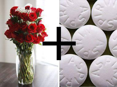 how to keep flowers alive longer avas flowers. Black Bedroom Furniture Sets. Home Design Ideas
